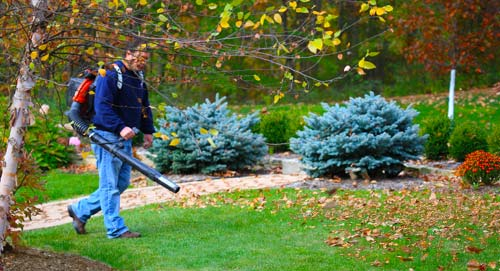 Fall Cleanup - Spring Fall Cleanup Services Columbus, Georgia
